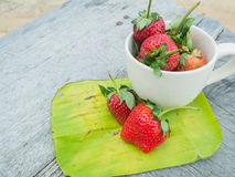 Strawberries in a cup Royalty Free Stock Photography