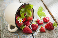 Strawberries in cup Royalty Free Stock Photography