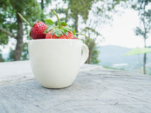 Strawberries in a cup Stock Photo