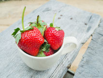 Strawberries in a cup Royalty Free Stock Images