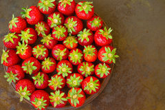 Strawberries  on dark background. Top view. Close up Stock Images