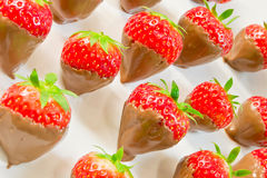 Strawberries dipped in chocolate Royalty Free Stock Images