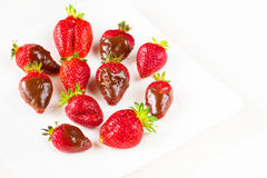 Strawberries dipped in delicious chocolate in white dish isolated on white background. Close up view. Strawberries dipped in delicious chocolate in white dish Royalty Free Stock Photo