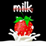 Strawberries dipped in milk with splashes Royalty Free Stock Images