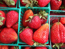 Strawberries displayed in baskets Stock Image