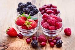 Strawberries, dogwood, blackberries and raspberries in bowls, royalty free stock image