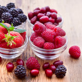 Strawberries, dogwood, blackberries and Stock Photography