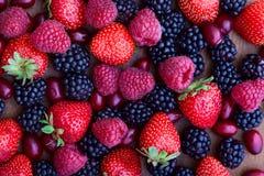 Strawberries, dogwood, blackberries and raspberries, top view, Royalty Free Stock Images