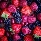 Strawberries, dogwood, blackberries and Stock Photo