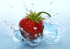 The Strawberries in drop. Ripe strawberries falls in water does hits Stock Photography