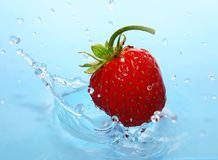 The Strawberries in drop. Royalty Free Stock Images