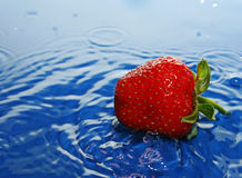The Strawberries in drop. Ripe strawberries falls in water does hits Royalty Free Stock Images
