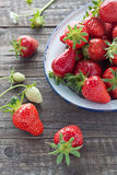 Strawberries in enamel bowl Stock Photography