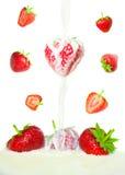 Strawberries falling in milk Stock Photos