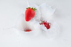 Strawberries falling into milk Royalty Free Stock Photos