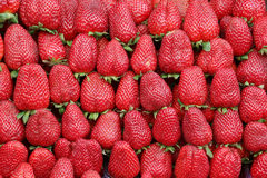 Strawberries. Strawberries on the farmer market Royalty Free Stock Images