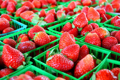 Strawberries at Farmer's Market. A collection of fresh strawberries are gathered in baskets on a sale table at a farmer's market Royalty Free Stock Image