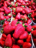 Strawberries At Farmers Market Royalty Free Stock Photography