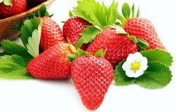 Strawberries with flower. On the white background Stock Images