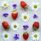 Strawberries and flowers Stock Photos