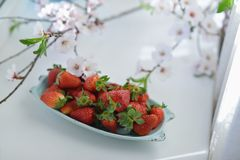 Strawberries and flowers Royalty Free Stock Image
