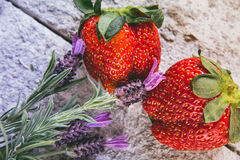 Strawberries with flowers Stock Photo