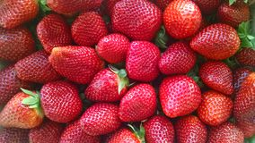 Strawberries. Foreground of bunch of ripe strawberries Royalty Free Stock Images