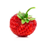 Strawberries, Fragaria berry Royalty Free Stock Image