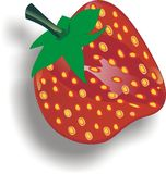 Strawberries - Fragaria plants fruit stock illustration