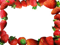 Strawberries frame Stock Photography