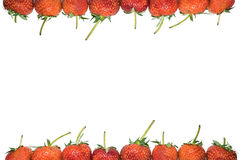 Strawberries frame Stock Image
