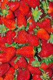 Strawberries. Fresh strawberries full frame displayed Stock Photography