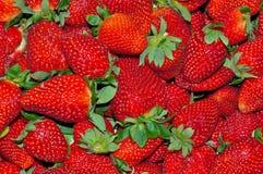 Strawberries. Fresh strawberries full frame displayed Stock Photos