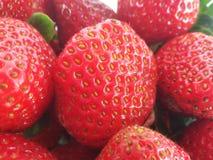 Strawberries at fresh market Royalty Free Stock Photos