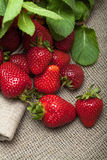 Strawberries. Fresh organic strawberries on a tablecloth Royalty Free Stock Images