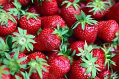 Strawberries. Fresh red strawberries in close up Royalty Free Stock Photography