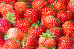 Strawberries. Fresh Strawberry Fruit food wallpaper Stock Photography