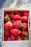 Strawberries fresh Royalty Free Stock Image