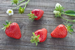 Strawberries. Freshly picked strawberries on wooden background Royalty Free Stock Photo