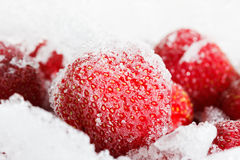 Strawberries, frozen for long duration storage of ice. Royalty Free Stock Image