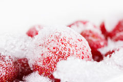 Strawberries, frozen for long time storage on white background Royalty Free Stock Photos