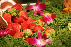Strawberries Fruit Arrangement. Fruit arrangement with greens, strawberries and coconuts Royalty Free Stock Photography