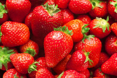 Strawberries. Fruit background texture shiny Royalty Free Stock Photography