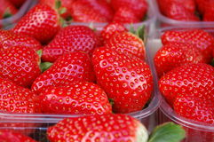 Strawberries fruit in boxes Stock Images