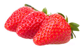 Strawberries fruits macro strawberry Stock Photography