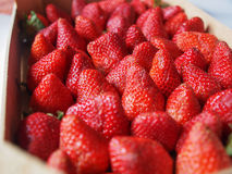 Strawberries fruits Stock Photos