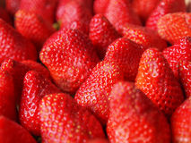 Strawberries fruits Royalty Free Stock Photos