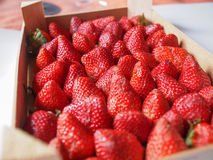 Strawberries fruits Stock Photography