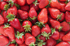 Strawberries. Full frame image of freshly picked strawberries Royalty Free Stock Photos