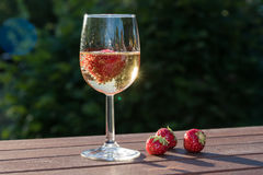 Strawberries and a glass sparkling wine. On a wooden table in a garden Royalty Free Stock Photography